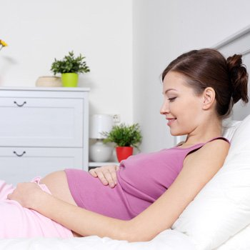 Buen pedigri si quieres quedar embarazada-9784