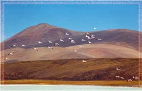 Travesti la laguna en La Rioja-5450