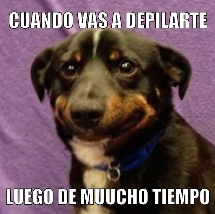 Puta ama perro en Corrientes-8032