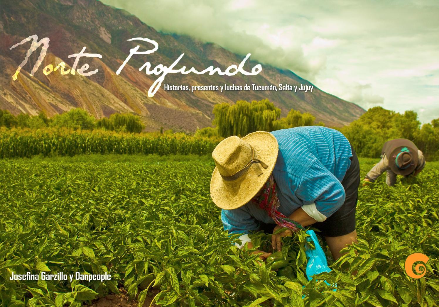 Servicio natural goma en Tucumán-2579