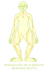 Trabajo todo el cuerpo dependiendo el tipo de masaje que elijas-5552
